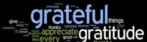 cropped-gratitude10.jpg