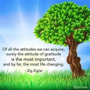 gratitudezig